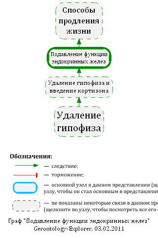 Подавление функции эндокринных желез, схема.